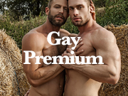 the best gay premium porn sites to get an accurate selection of superior quality gay material