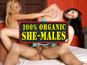 among the most popular shemale adult sites bringing you all natural trannies