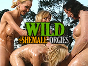 one of the most worthy shemale porn sites to watch wild tranny orgies
